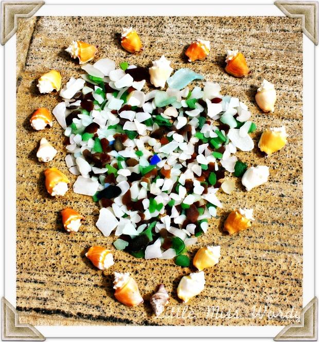 Sea Shells By The Sea Shore, Beach Art, Travel, Puerto Rico, Island Living