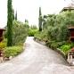 Patland Estate Vineyards