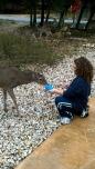 Animal Lover in Heaven