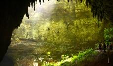 Puerto Rico, Caverns, Nature Photos