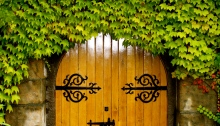 Wooden Arch Doors, Metal Hinges, Ivy covered entrance