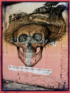 Skull City Nest