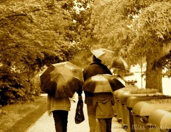 Under My Umbrella, Rainy Day, Family Umbrella
