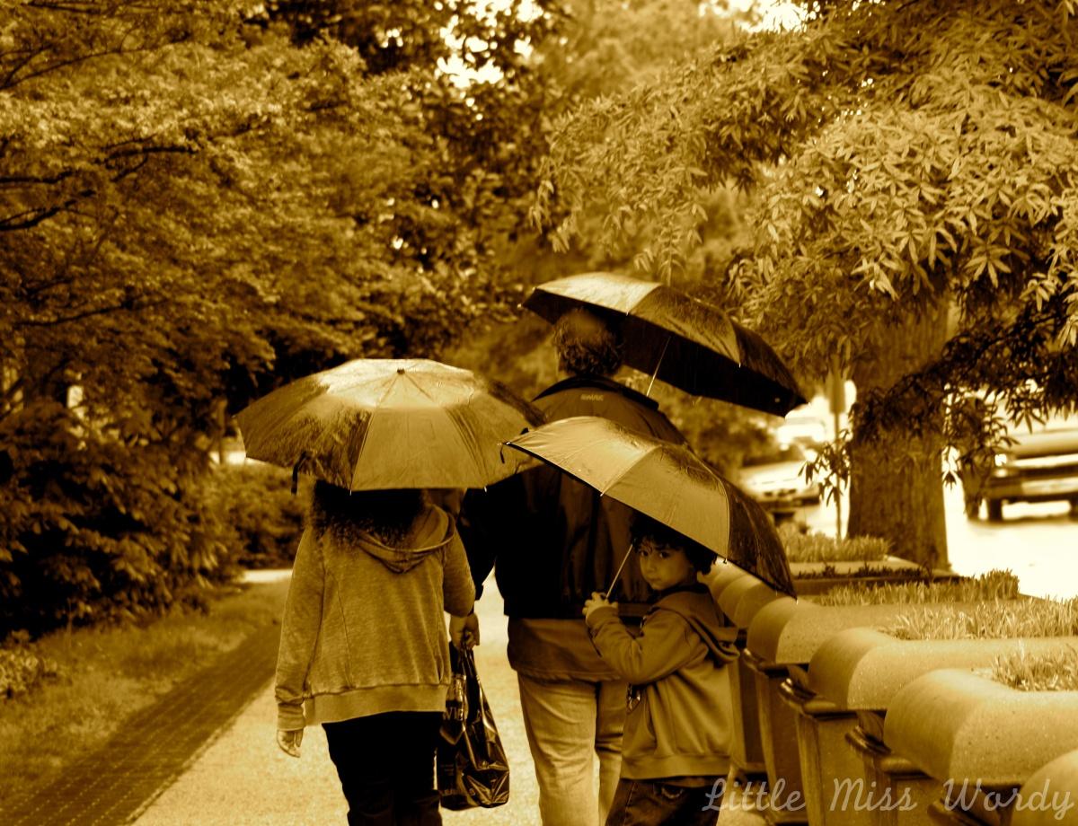 Rain Down on Me, Under My Umbrella, Let it Rain, Rainy Day