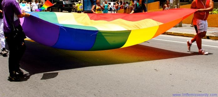 Gay Pride Parade16