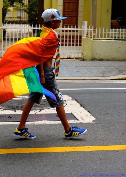 Gay Pride Parade9