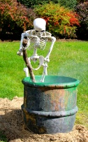 Witch's brew, Skeleton
