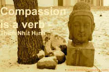 #1000Speak, Compassion, Meditation