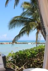 Jamaica Trip3