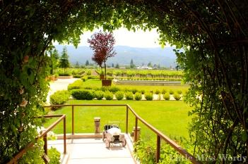 wine country, napa valley, travel, vineyard, wine tasting, kelham, taylorfamily, peacock, kitchak, patland,
